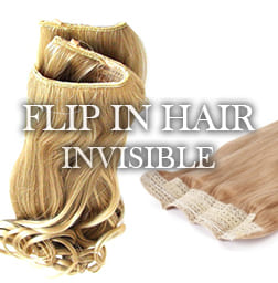 Extensions Cheveux Flip In Hair